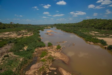 8R2A1322 Gorongosa River 7