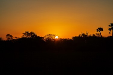8R2A1537 Gorongosa NP Sunset