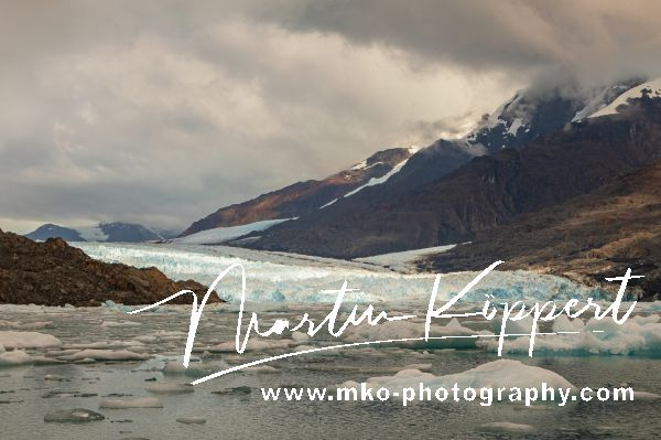 7P8A9090 Glacier Montt Caleta Tortel Northern Patagonia Southern Chile