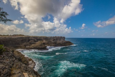 0S8A0873 Cliffs North Point Barbados Caribbean