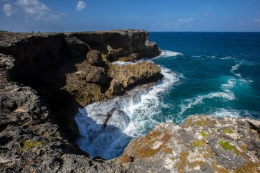 0S8A0892 Cliffs North Point Barbados Caribbean
