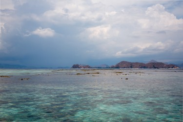 8R2A4295 Makassar Reef Flores Sea indonesia